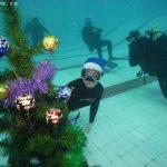 Новогодняя подводная Елка дайв-центра ПОТОК!