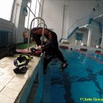 obuchenie-rescue-diver-padi--ryazan-dive-centr-potok007