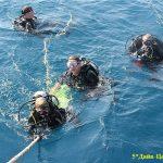 divesafari4-diver--ryazan-divecentr-potok-10050