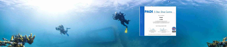 Фотография подводные фотографы