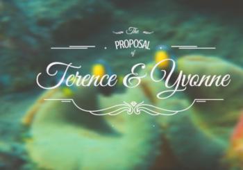 Уникальное предложение руки и сердца под водой