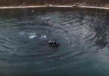 Водолазы отработали навыки стрельбы под водой