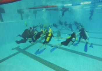 Подводная ёлка в нашем дайвинг центре Поток