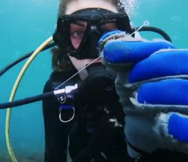 Мировой рекорд по подводной очистке мусора
