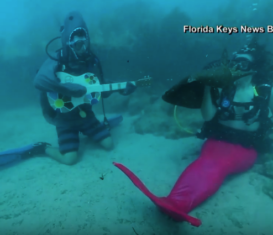 Дайверы устроили во Флориде концерт под водой