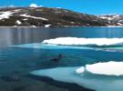Дайвинг на озере Торфиннсватнет, Норвегия