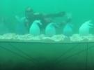 Подводный музей в Эстонии