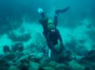 В Греции для дайверов откроют обломки древнего судна