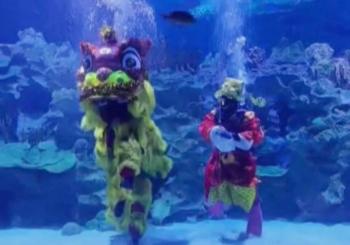 Малазийские дайверы исполнили танец подводного льва на китайский Новый год