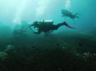 Тайские дайверы вытащили брошенные рыболовные сети