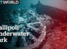 Погружение в историю: затонувшие корабли Галлиполи открыты для дайверов